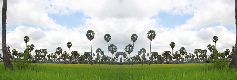 cambodia-provinces-map